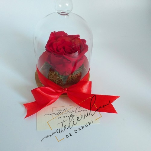 Trandafir Criogenat  Rosu...